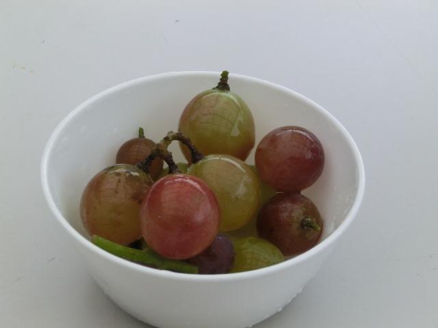 西田さんのブドウ