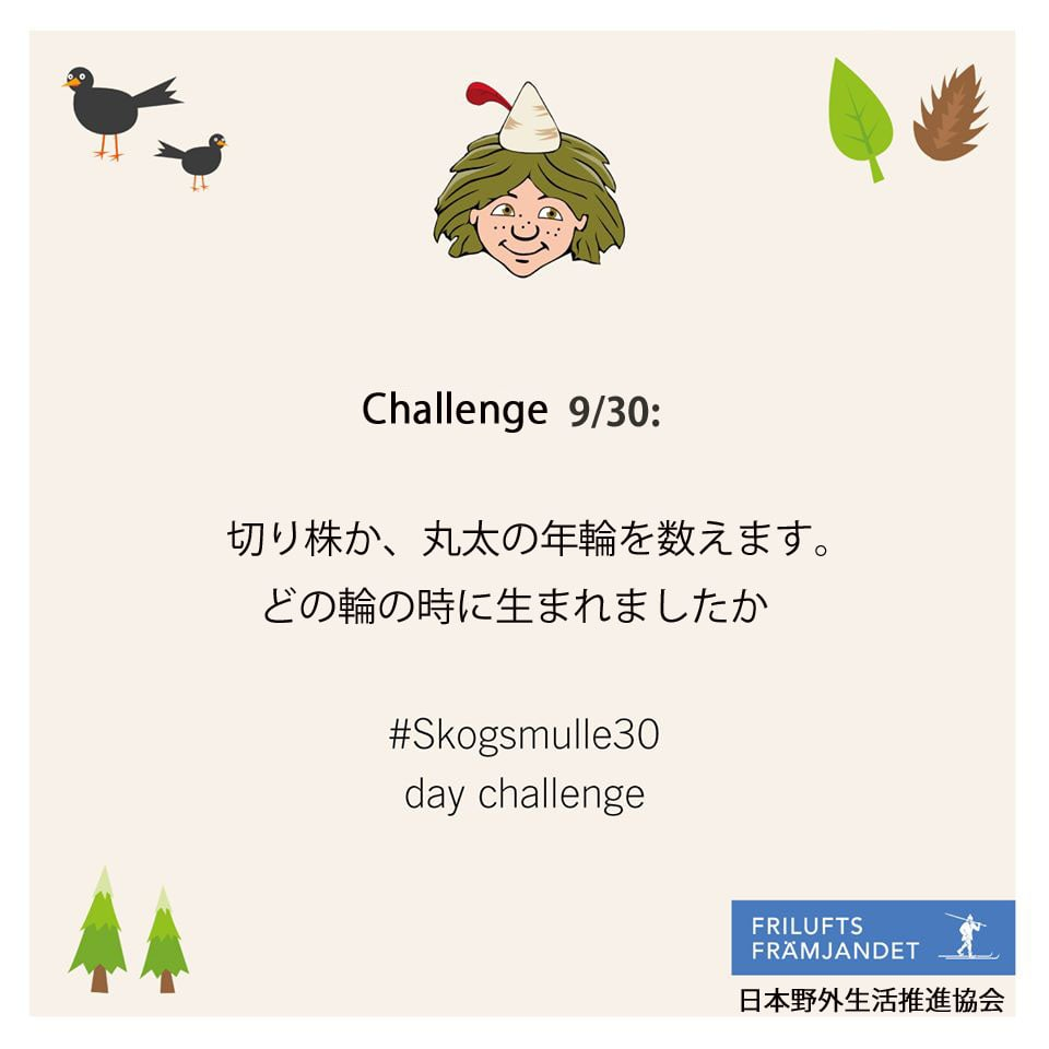 9 チャレンジ