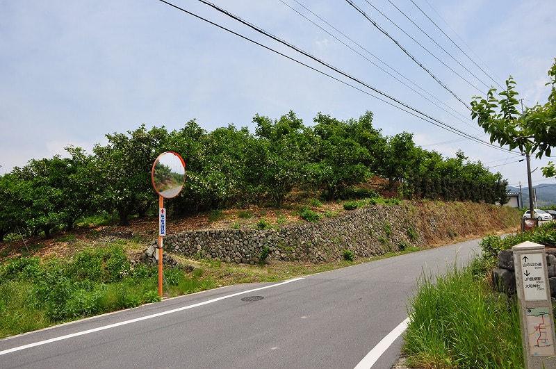 前方部から見た農道向こうの後円部