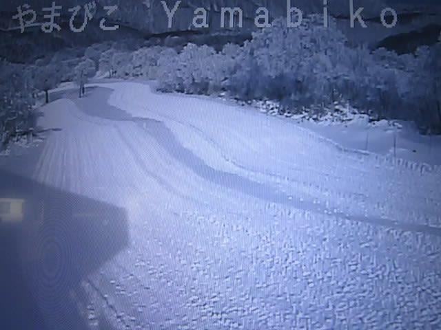 カメラ 野沢 ライブ スキー 温泉 場