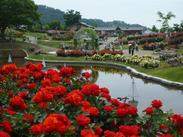 Higashizawa Rose Park (東沢バラ公園) - 休日は風を切って