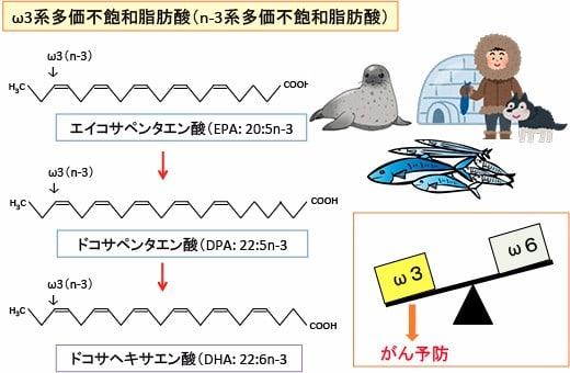 533)「ω3系多価不飽和脂肪酸が前...