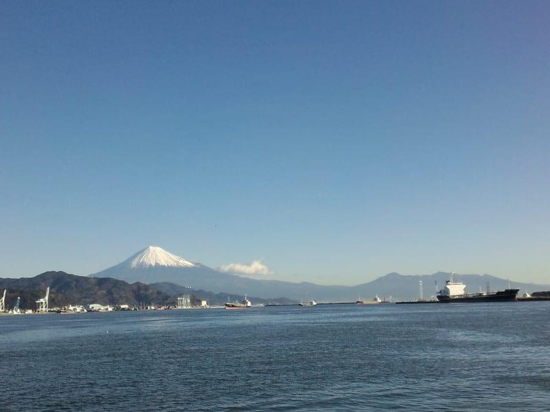 今日の清水港