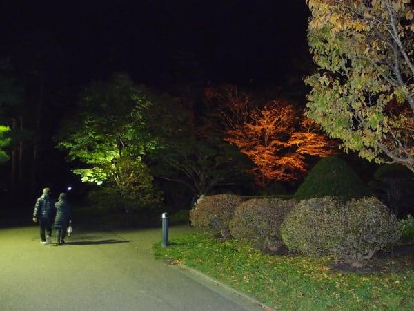 写真説明=ライトアップの風景