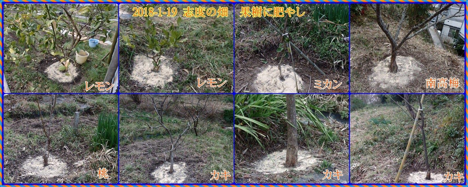 志度の畑は例年以上の寒さの中 木の根元に肥やしをやり、反原発集会に ...