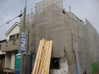 Fuji5_spot11113_358_2