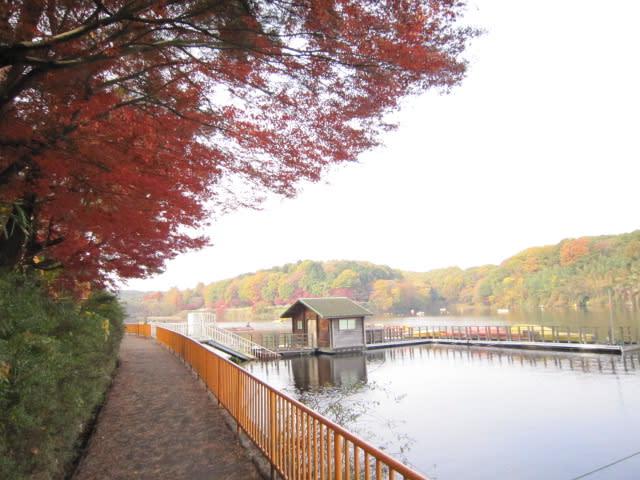https://blogimg.goo.ne.jp/user_image/2a/dc/b3e57b4c7938416902046c16e672910a.jpg