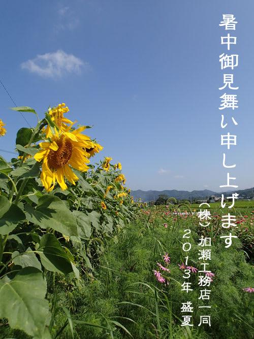 20130807siyochuumimai