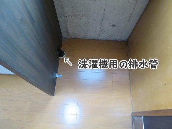 洗濯機用の排水管