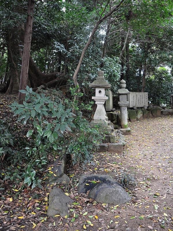 南側開口部付近から見た八坂神社古墳