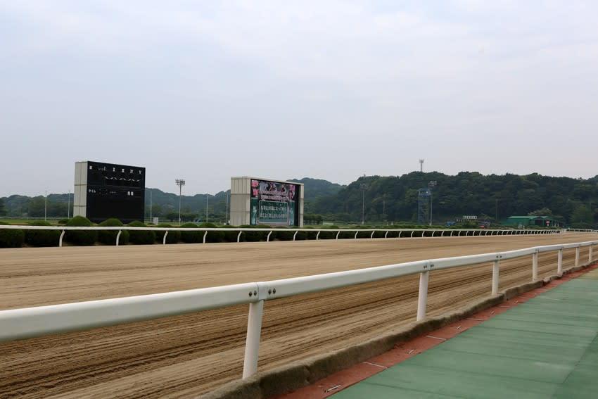 佐賀 競馬