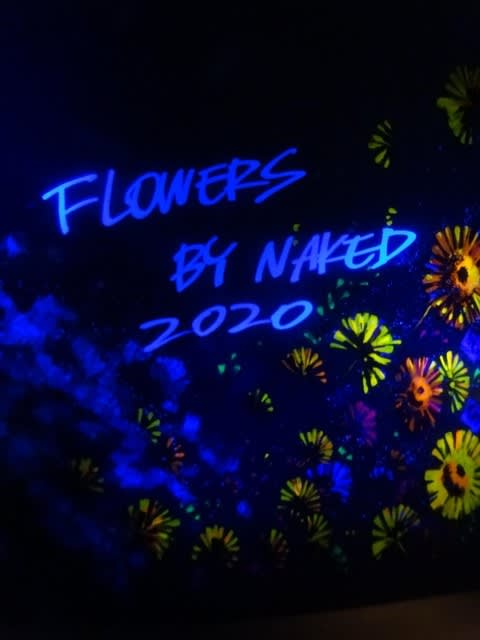 フラワーズ バイ ネイキッド 2020