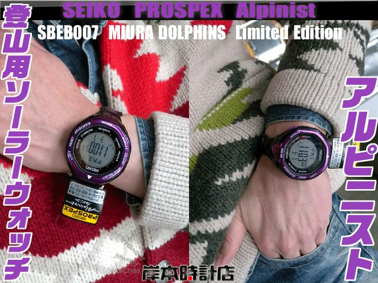 4d0f957a92 SBEB007(パープル) ※MIURA DOLPHINS公認限定モデル 【在庫あり】 ※限定 ...