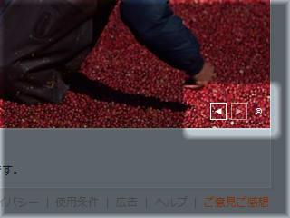 Bingの画像