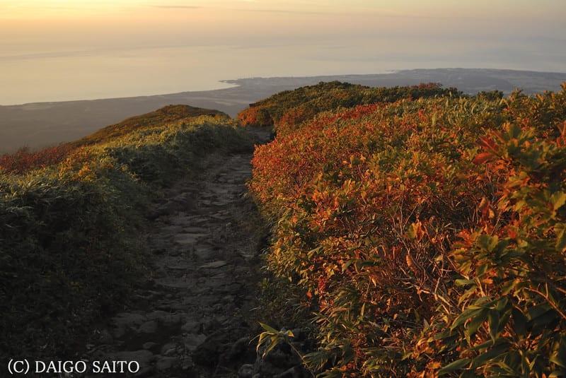 秋色の登山道