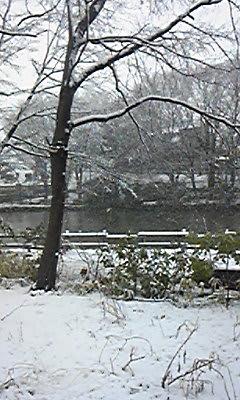 雪景色(菊名池)