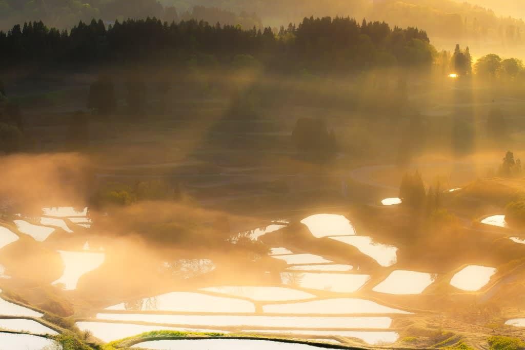 棚田と光芒の写真