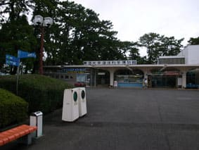 三保水族館