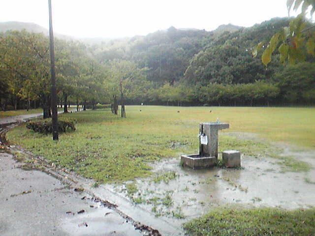 今日の長谷公園