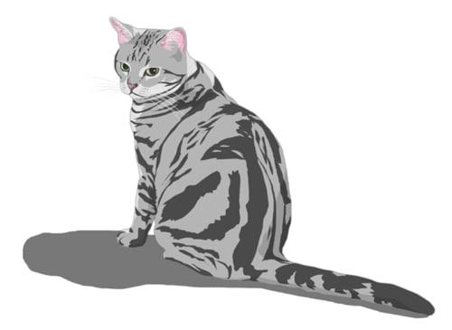 アメショ祭り猫絵 ほぼ猫日記時々カレー
