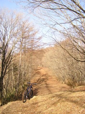 奥多摩 山岳サイクリング