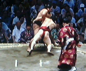 nhk 大相撲 取組 動画