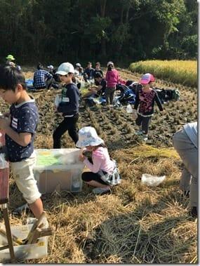 中川児童館バスハイク_9