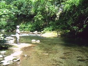 恵庭市の漁川上流でフライ - 娘...
