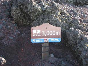 201008042850_2
