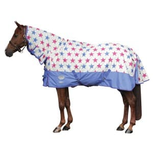 ariとchunの楽しい馬生活
