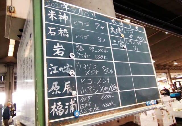 小田原魚市場 水揚げ
