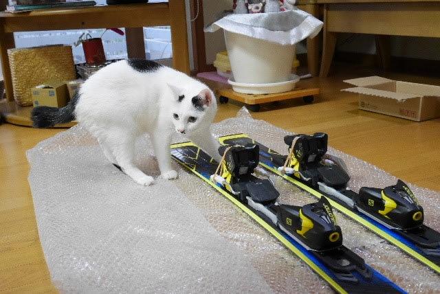 休ブちょっとタンマ<スキー板を買ってもらったー♪>