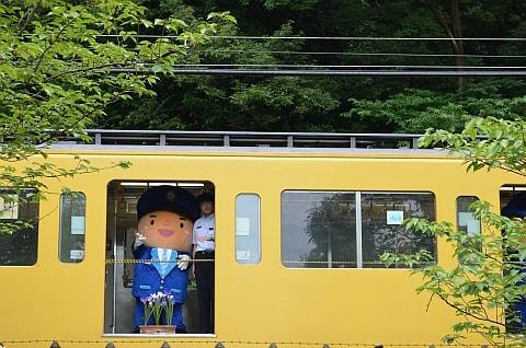 北山公園 菖蒲祭り