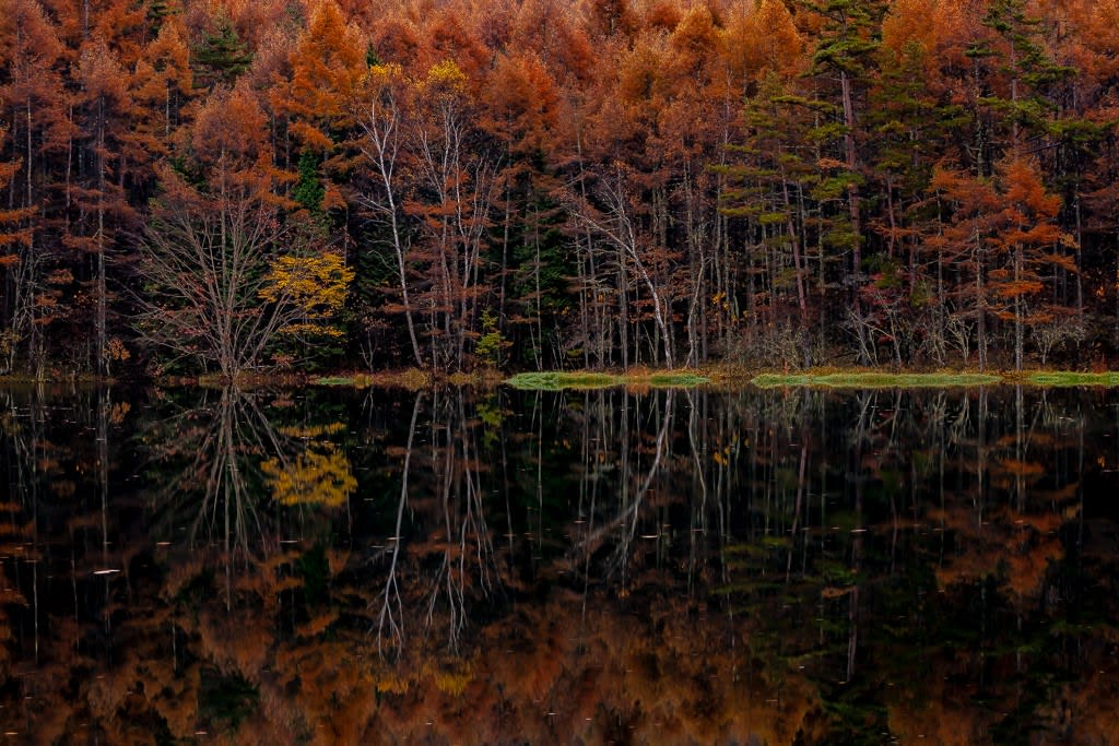 御射鹿池の紅葉写真