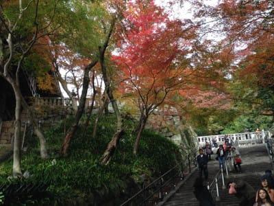 清水寺の石段