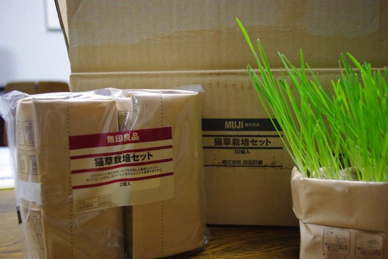猫草ホルダー(無印良品・猫草栽培キット専用)ホワイト