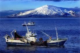EU漁業政策は巨大な失敗だ アイ...