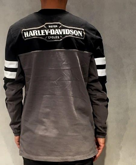 96432-18VM Genuine Harley-Davidson Men/'s Circle 03 Pullover Sweatshirt
