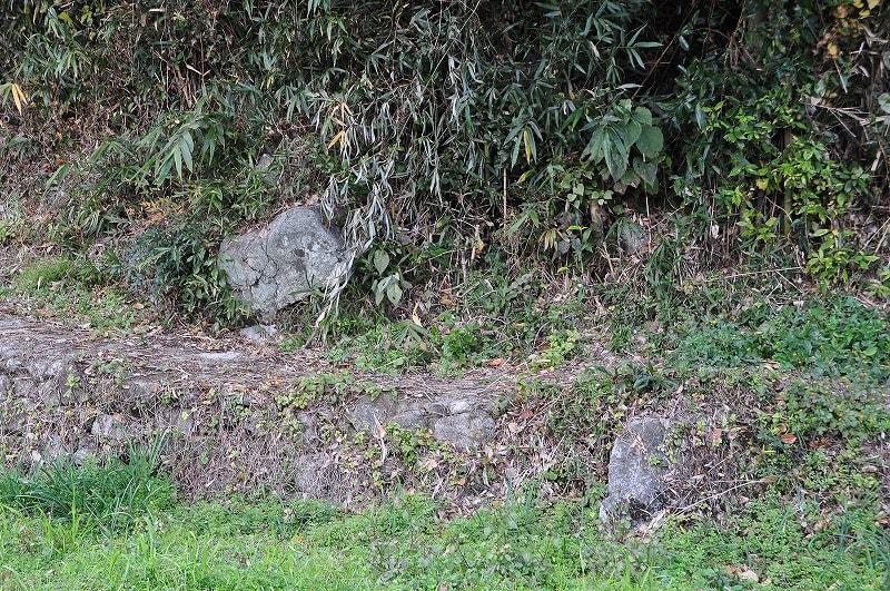 16D-24露出石材