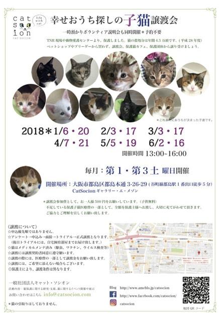 本日休業/コマハルとお知らせ