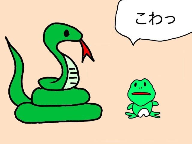 蛇 に 睨 まれ た カエル