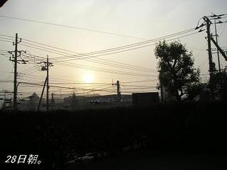 霧の中から、淡いピンクの太陽(*^。^*)。