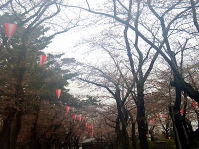 ★千秋公園