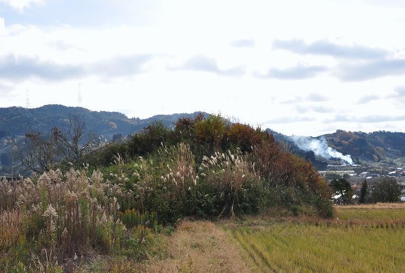 北から見た福塚古墳