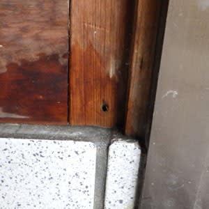 玄関口の穿孔跡