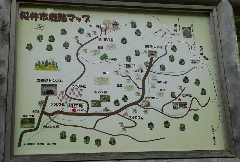鹿路MAP