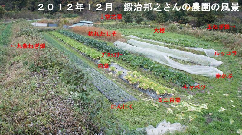 20121205_shokuiku08_2