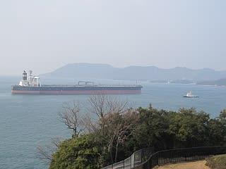yoshimapa2