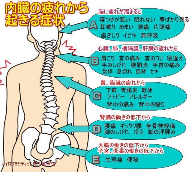 痛 い 生理 腰痛