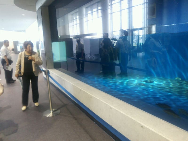 函館国際海洋都市構想